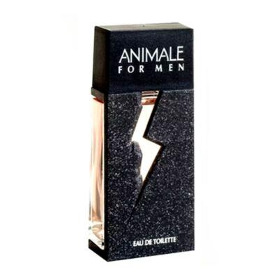 Imagem 2 do produto Animale For Men Animale - Perfume Masculino - Eau de Toilette - 100ml