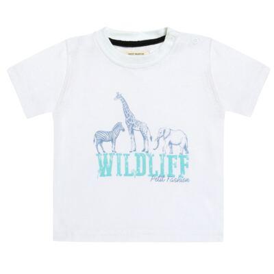 Imagem 2 do produto Camiseta com Bermuda em sarja Safari - Petit