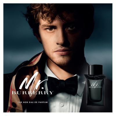 Imagem 8 do produto Mr. Burberry - Perfume Masculino - Eau de Parfum - 100ml