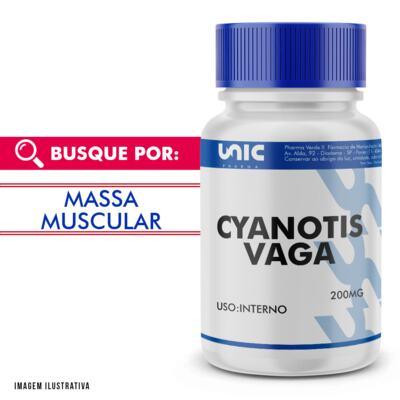 Imagem 1 do produto Cyanotis vaga 200mg - 120 Cápsulas