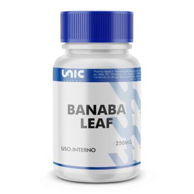Imagem 2 do produto Banaba Leaf (Lagerstroemia Speciosa) 250mg - 90 Cápsulas