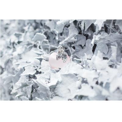 Imagem 4 do produto Nina L'eau Nina Ricci - Perfume Feminino - Eau de Toilette - 80ml
