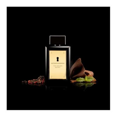 Imagem 14 do produto The Golden Secret Antonio Banderas - Perfume Masculino - Eau de Toilette - 200ml
