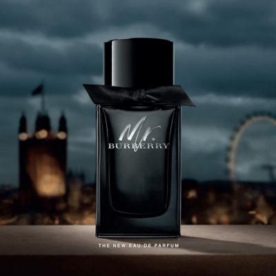 Imagem 11 do produto Mr. Burberry - Perfume Masculino - Eau de Parfum - 100ml
